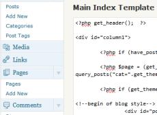 Editing Code in Wordpress