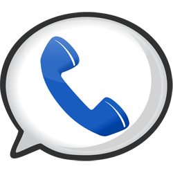 Google VOICE