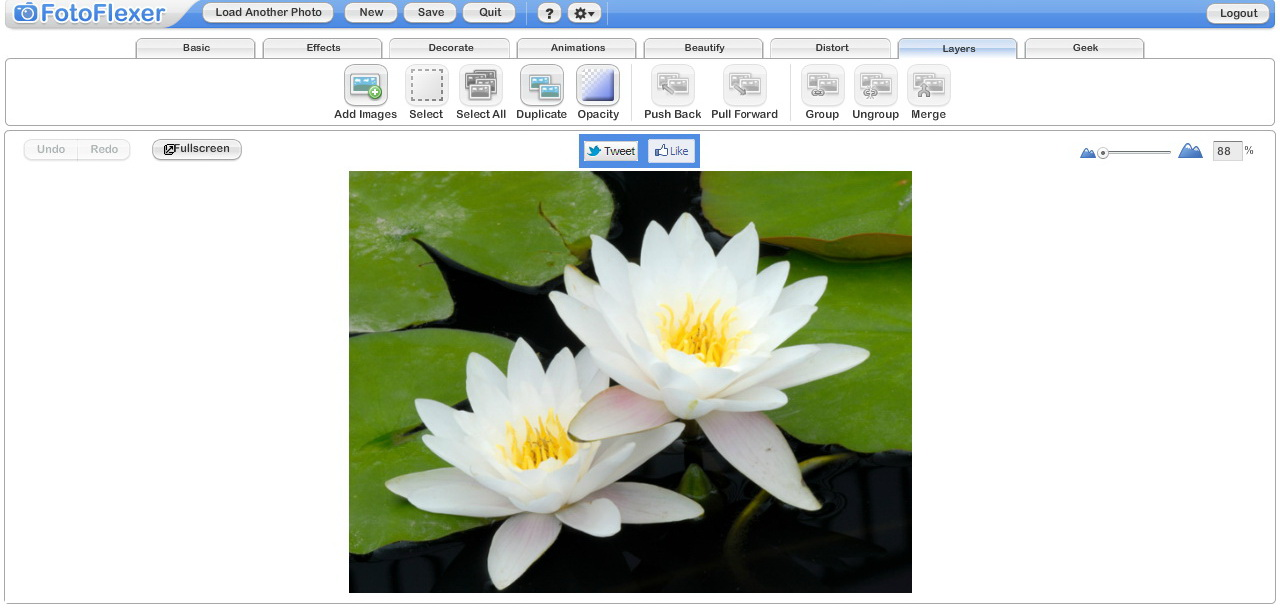 FotoFlexer editor
