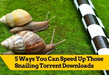 Speed Up Torrent downloads