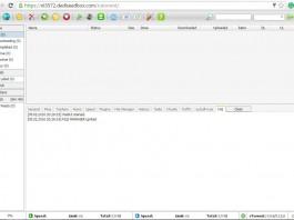 DediSeedBox screenshot