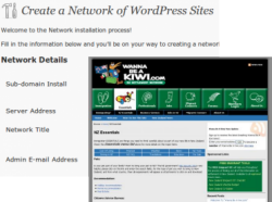 Wordpress Multisite and CMS