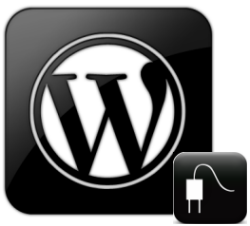 Wordpress plugins support