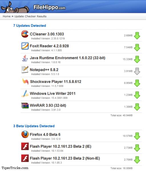 FileHippo Update Checker Report