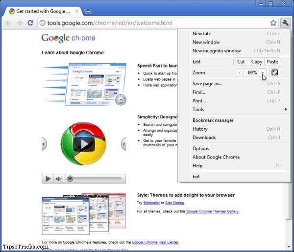 Download Google Chrome 8 (Beta) Full Offline Installer
