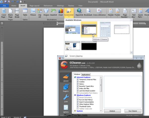 MSWord Screenshot Capture Tool