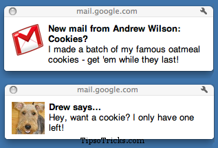 Gmail Chat and Email Desktop Notifications