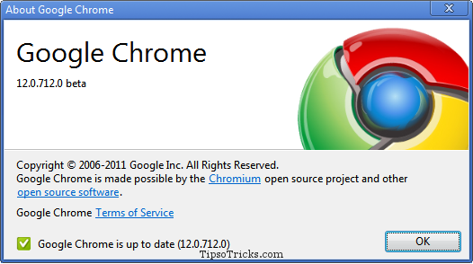 Google Chrome 12 screenshot